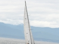 SWIFTSURE 2014 - Keith's Photography-712