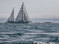 Swiftsure1132 - EPIC SAILING
